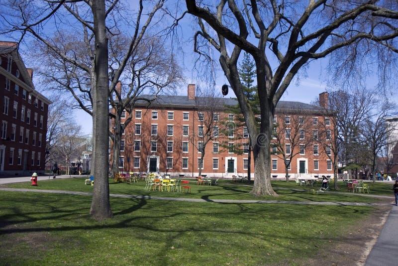 kampus Harvard obrazy royalty free