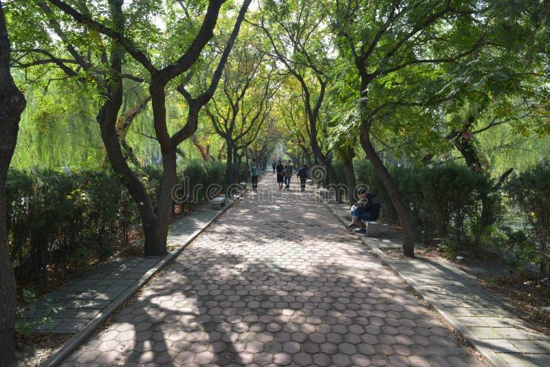 Kampus Nankai uniwersytet obrazy royalty free