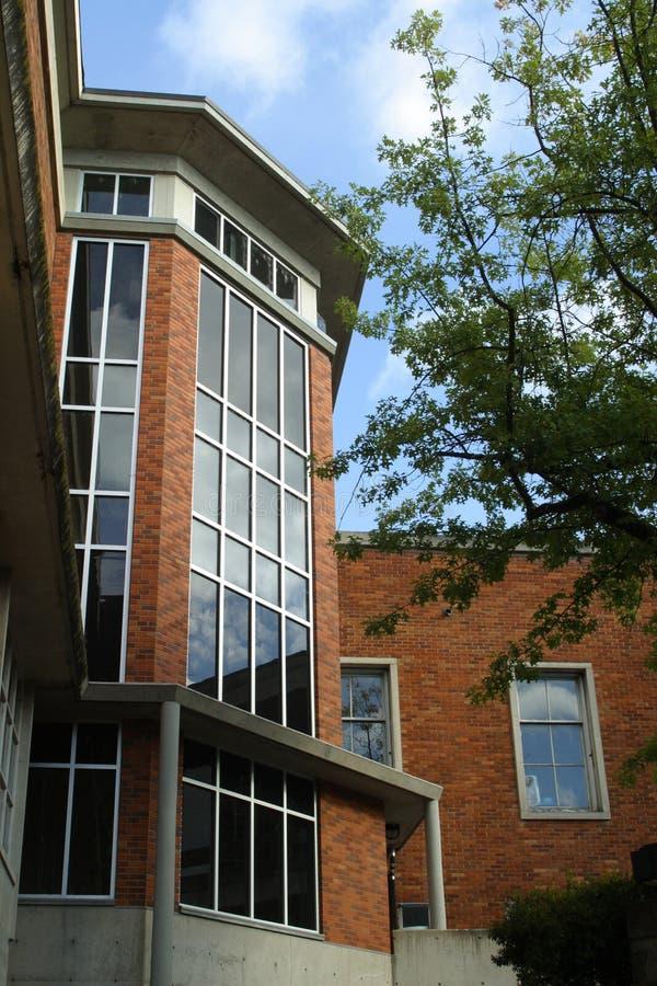 kampus uczelni portrety fotografia stock