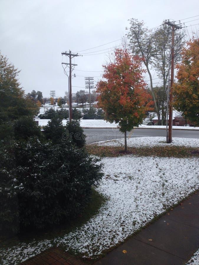 Kampusu śnieg zdjęcie royalty free