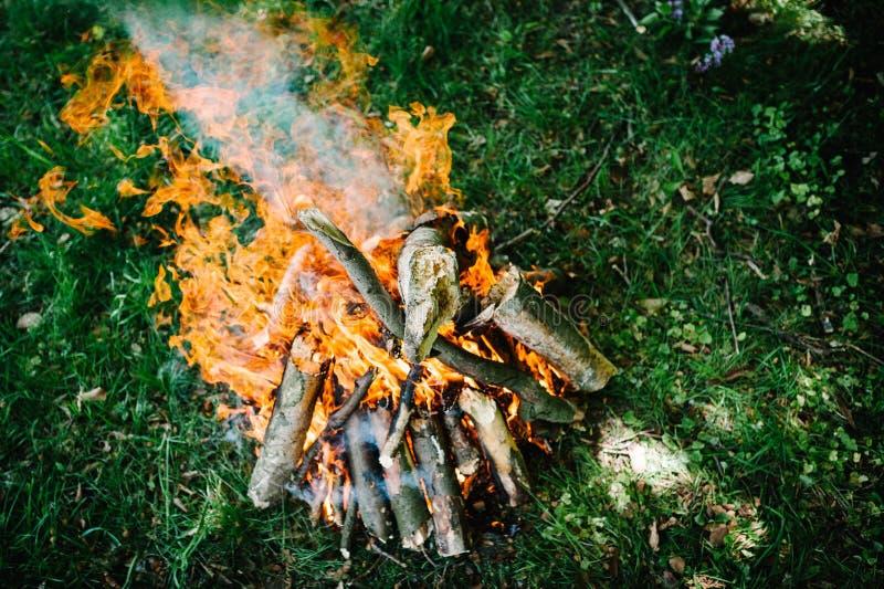 Kampvuur op de aard Vuur, rust op vakantie in aard royalty-vrije stock fotografie
