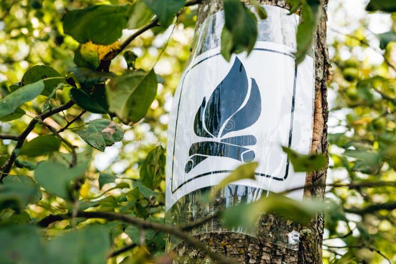 Kampvuurteken op een boom in boskampplaats royalty-vrije stock afbeeldingen