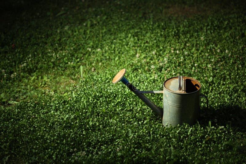 kan gräs att bevattna royaltyfri foto