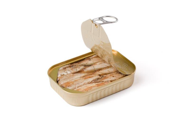 kan sardines fotografering för bildbyråer