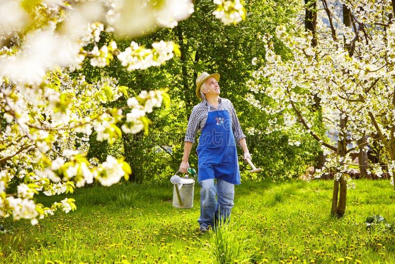 Kan trädgårds- utrustning för trädgårdsmästaren som bevattnar arkivfoton