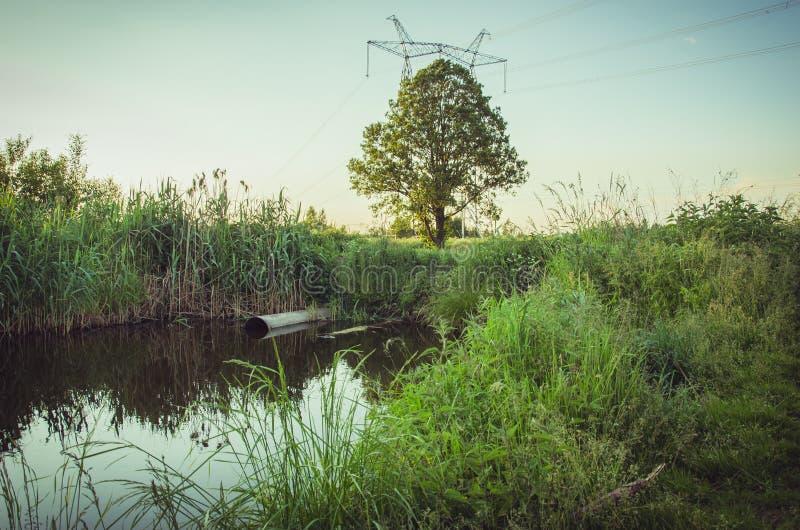 Kanał ściekowy nalewa za odpady jezioro, ekologia temat/: Ścieki przepływ od wodnej drymby w jezioro zdjęcia royalty free