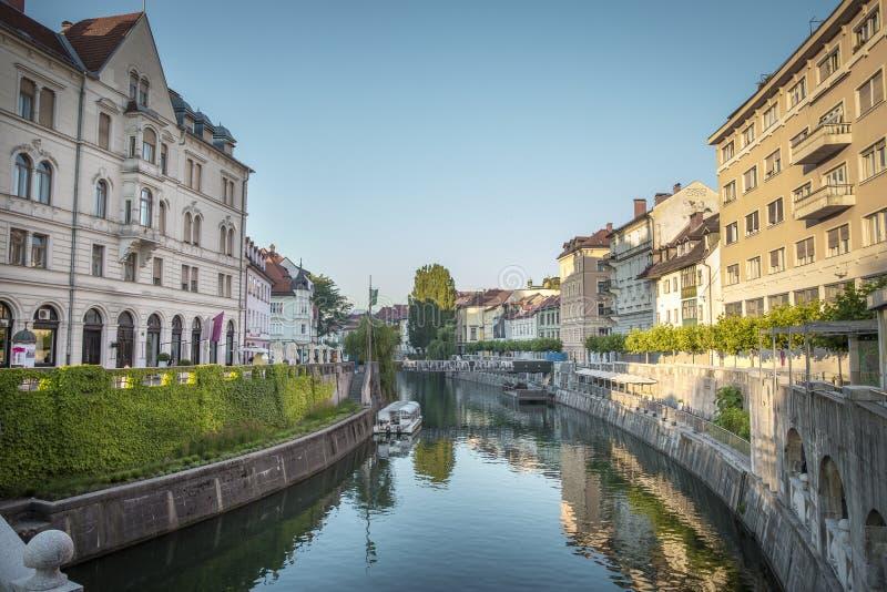 Kanał Ljubljanica rzeka w Ljubljana obraz royalty free