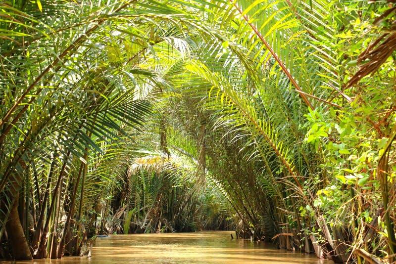 Kanał, Mekong delta, Wietnam zdjęcie stock