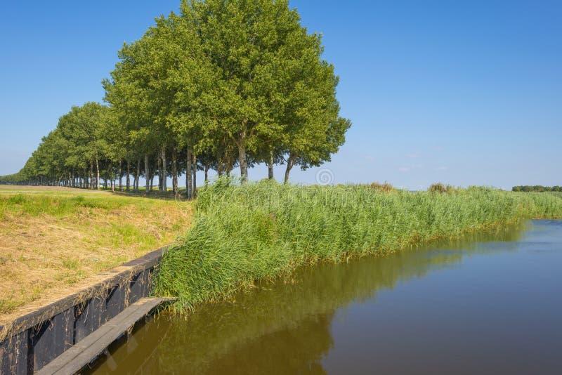 Kanał w polu pod niebieskim niebem w świetle słonecznym w lecie obraz royalty free
