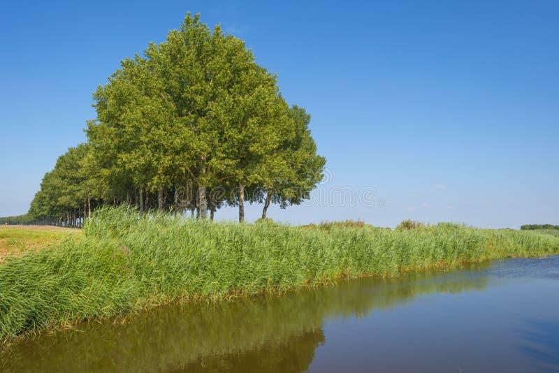 Kanał w polu pod niebieskim niebem w świetle słonecznym w lecie zdjęcia stock