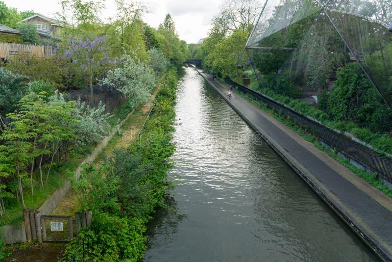 Kanałowy bieg Ptasią klauzurą w Londyn fotografia royalty free