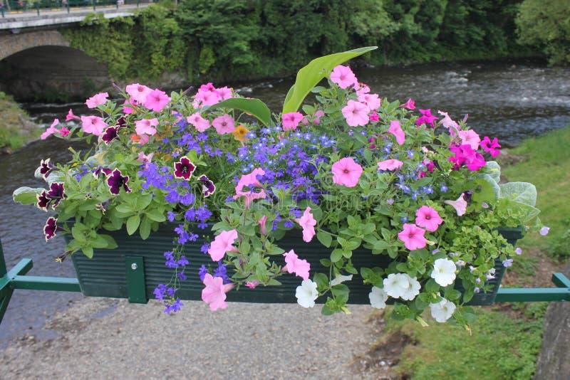 Kanaal met bloemen op een brug stock afbeeldingen