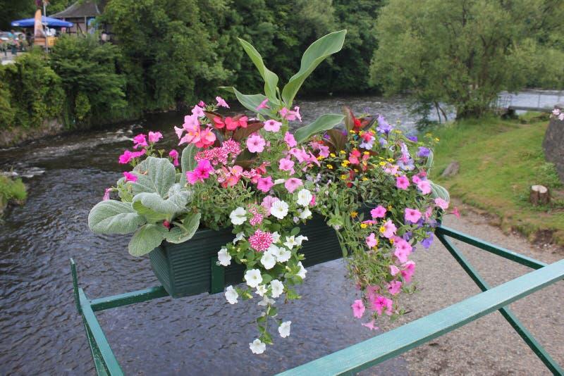 Kanaal met bloemen op een brug stock afbeelding
