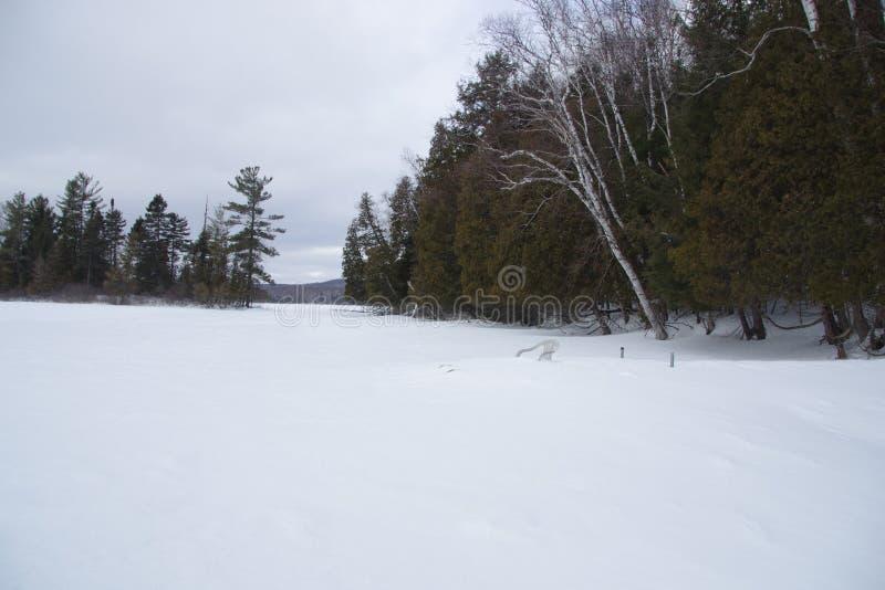 Kanada, śnieżny krajobraz w prowinci Quebec fotografia stock