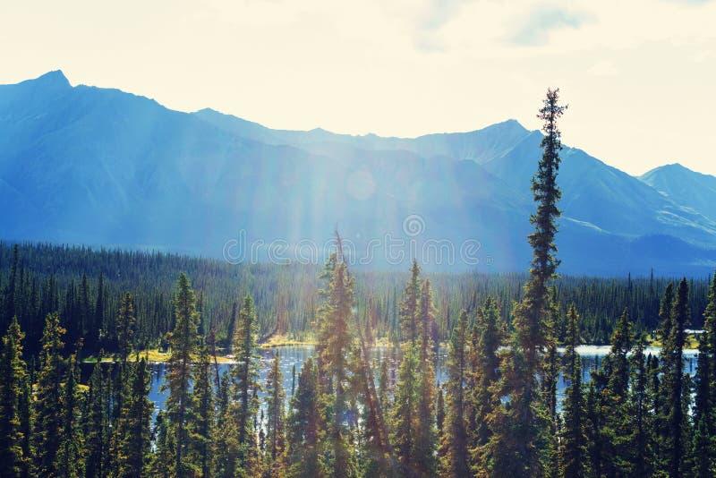 Download Kanada berg fotografering för bildbyråer. Bild av rekreation - 76703781