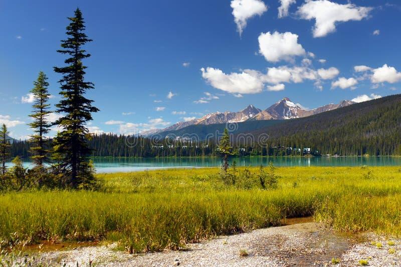 Kanada British Columbia berglandskap royaltyfria bilder