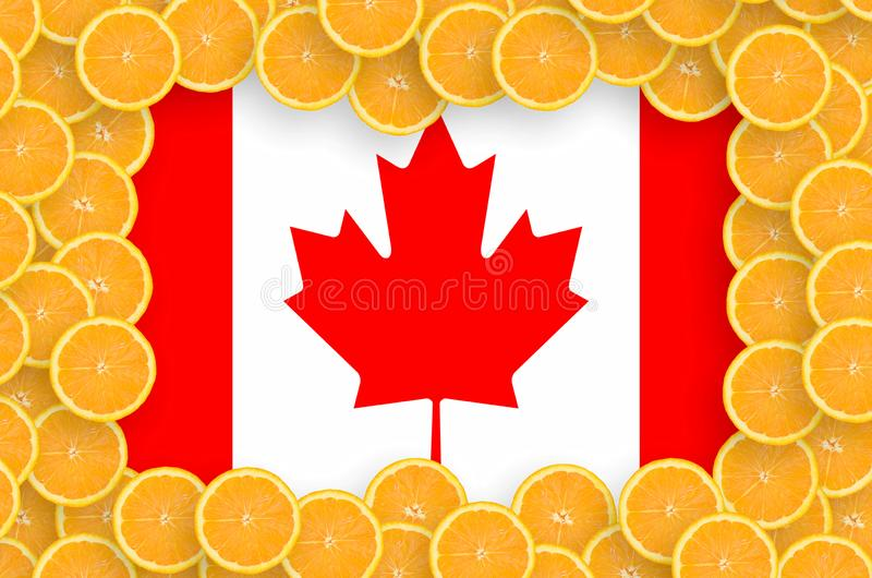 Kanada flagga i ny citrusfruktskivaram stock illustrationer
