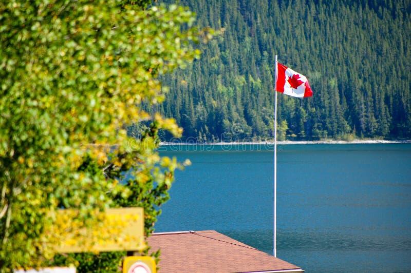 Kanada flagga i vind arkivfoton