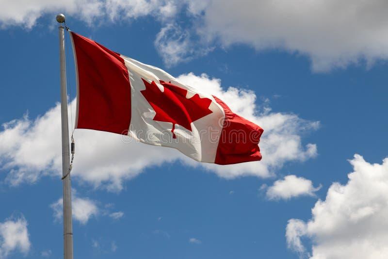 Kanada flagga in i vinden över blå himmel royaltyfri bild