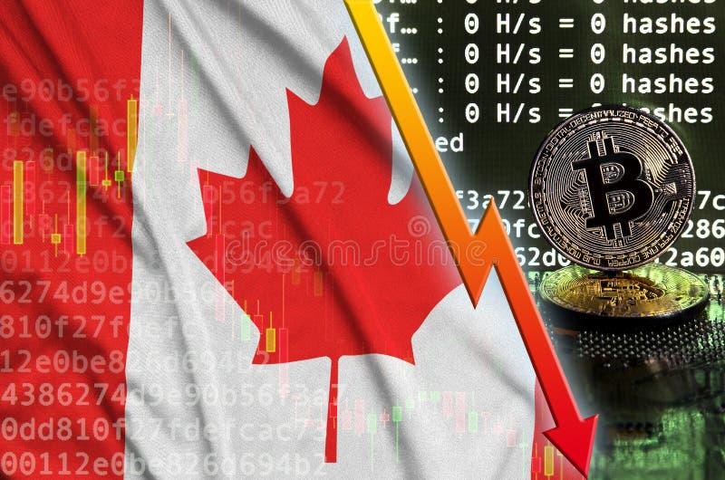 Kanada flagga och fallande röd pil på bitcoin som bryter skärmen och två fysiska guld- bitcoins stock illustrationer