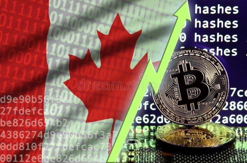 Kanada flagga och stigande grön pil på bitcoin som bryter skärmen och två fysiska guld- bitcoins royaltyfri illustrationer