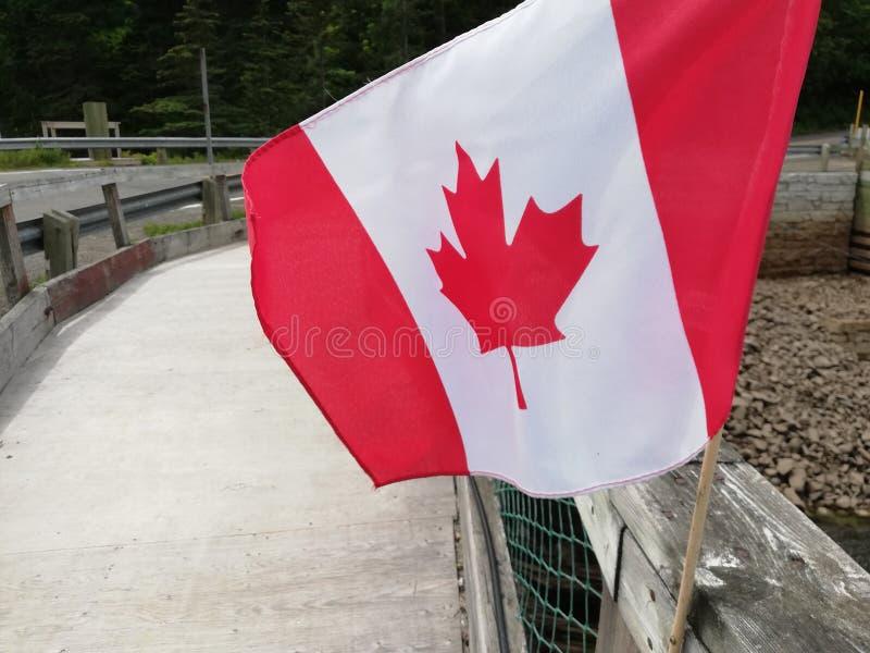 Kanada flaggaFN vinden royaltyfri foto