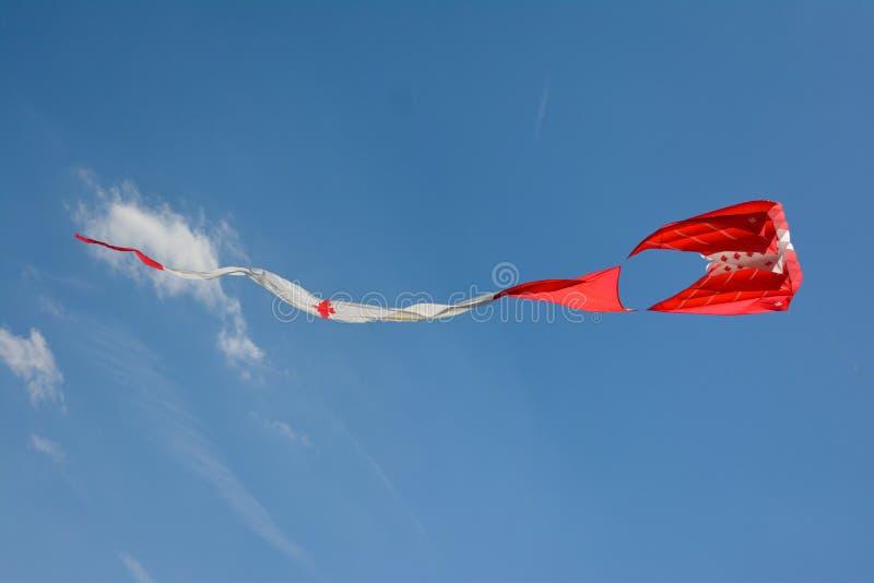 Kanada kani latanie w chmurach i niebieskim niebie Panoramicznych, panorama zdjęcia royalty free