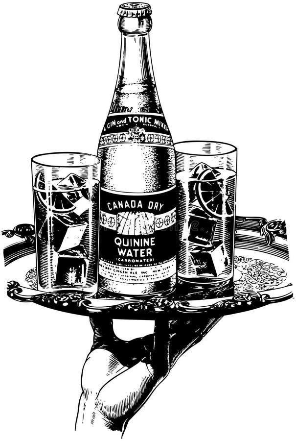 Kanada torrt kininvatten royaltyfri illustrationer