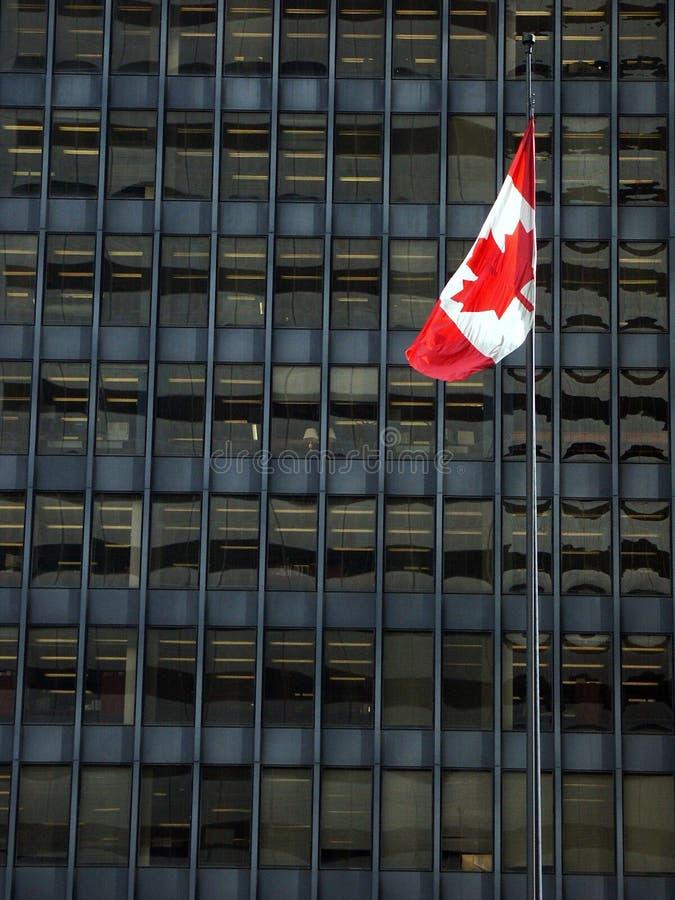 kanadensisk flagga royaltyfria foton
