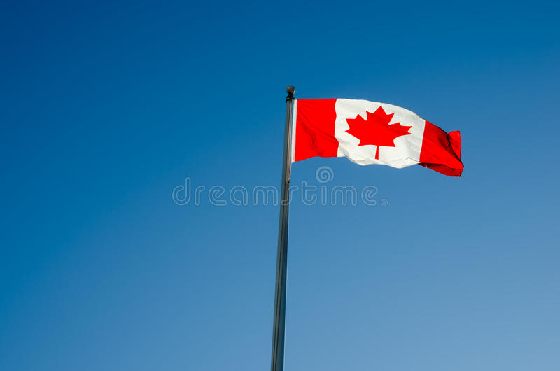 kanadensisk flagga royaltyfri bild