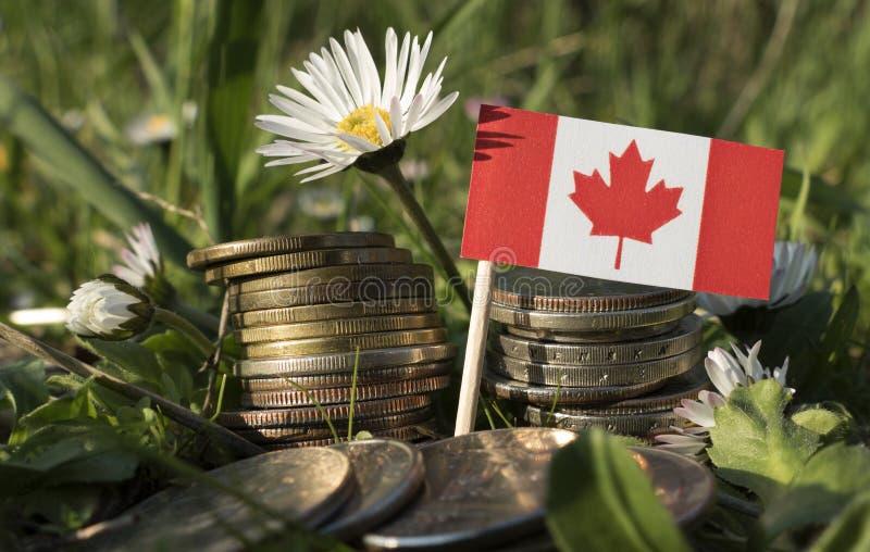 Kanadensisk flagga med bunten av pengarmynt med gräs royaltyfria bilder