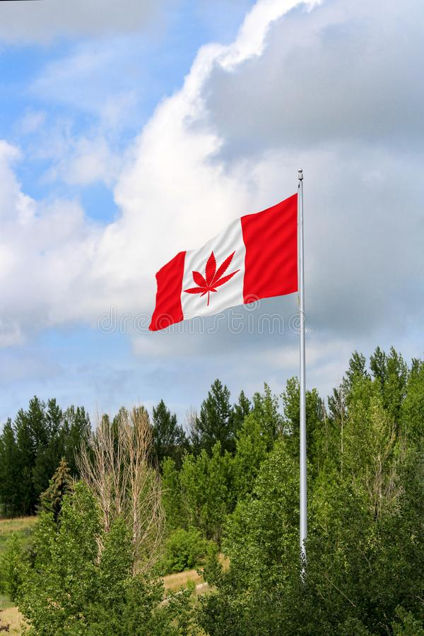 Kanadensisk flagga med ett marijuanablad i mitten arkivbild