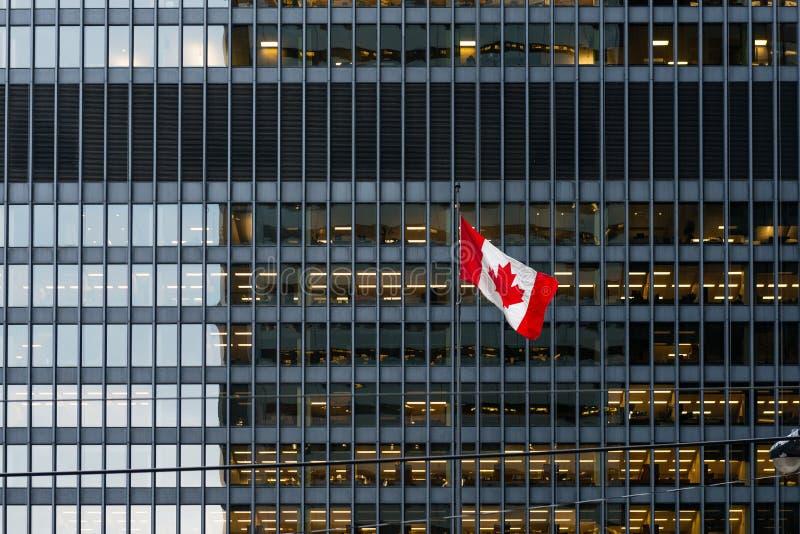 Kanadensisk flagga och modern kontorsbyggnad i i stadens centrum Toronto royaltyfri foto
