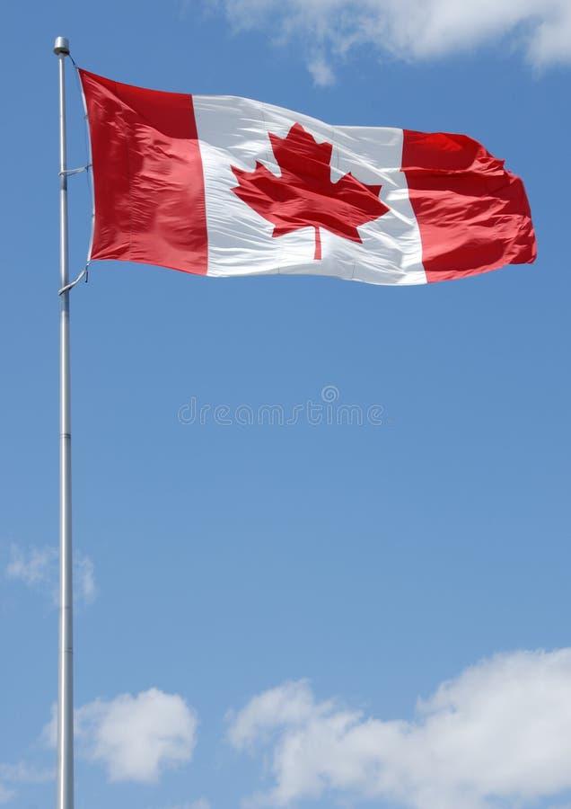 kanadensisk flaggaserie arkivbilder