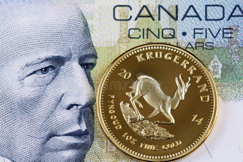 Kanadensisk räkning för dollar fem med en guld- en unskrugerrand arkivbilder