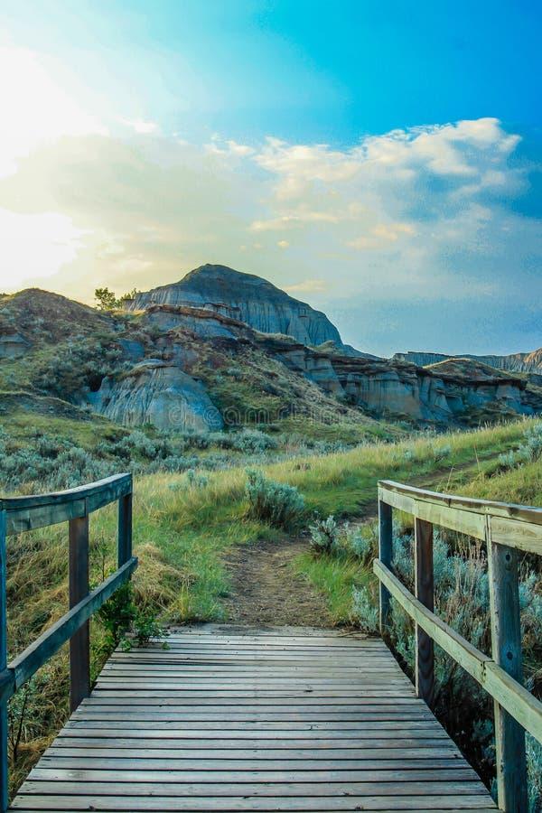 Kanadensiska badlands, den provinsiella dinosaurien parkerar, Alberta, Kanada royaltyfri fotografi