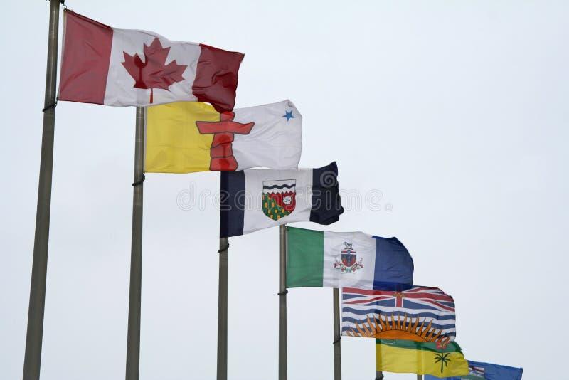 kanadensiska flaggor fotografering för bildbyråer