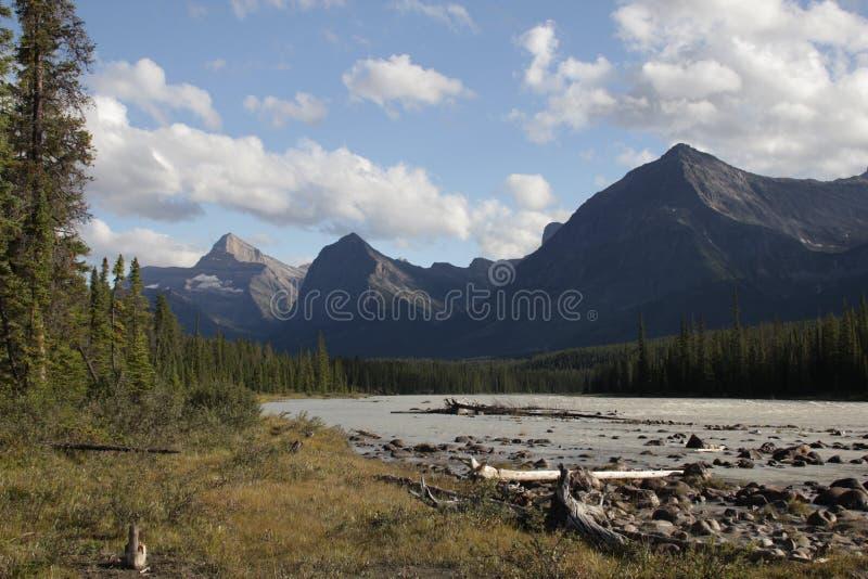 kanadensiska rockies royaltyfria foton