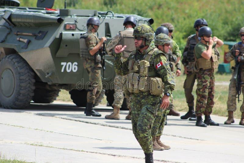 Kanadensiska soldater arkivbilder