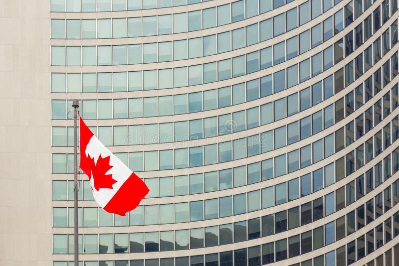 Kanadensiskt flaggaToronto stadshus arkivfoton