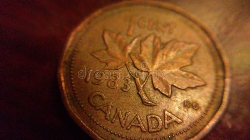 Kanadensiskt mynt royaltyfria foton