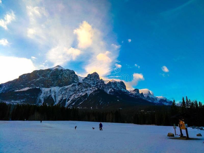 Kanadier Rocky Mountains bei Canmore, Alberta, Kanada lizenzfreies stockfoto