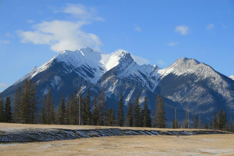 Kanadische felsige Berge über dem Grasland stockbilder