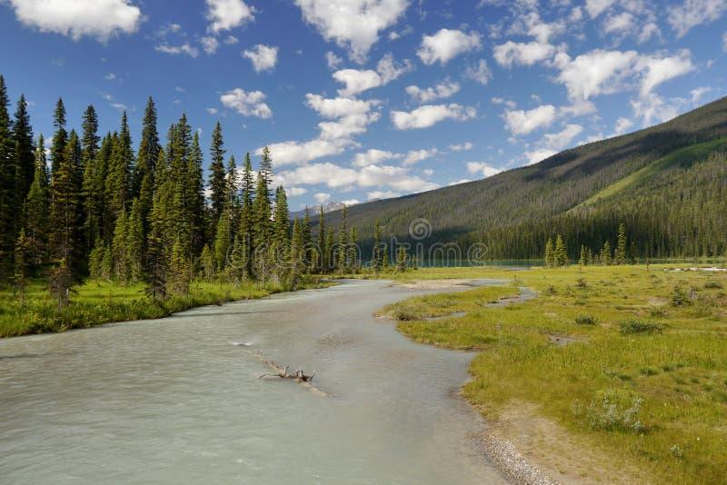 Kanadische felsige Berge stockfoto