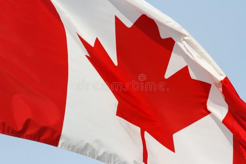 Kanadische Markierungsfahne stockfoto