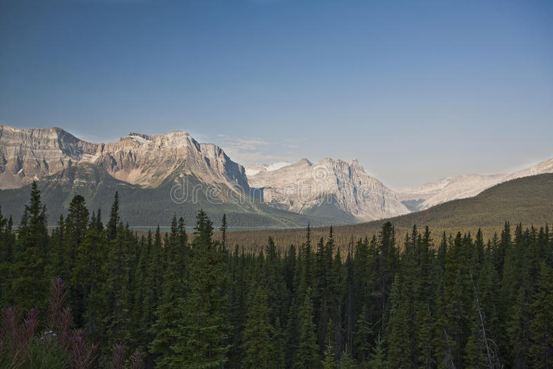 Kanadische Rockies - Jaspis-Nationalpark stockfotografie