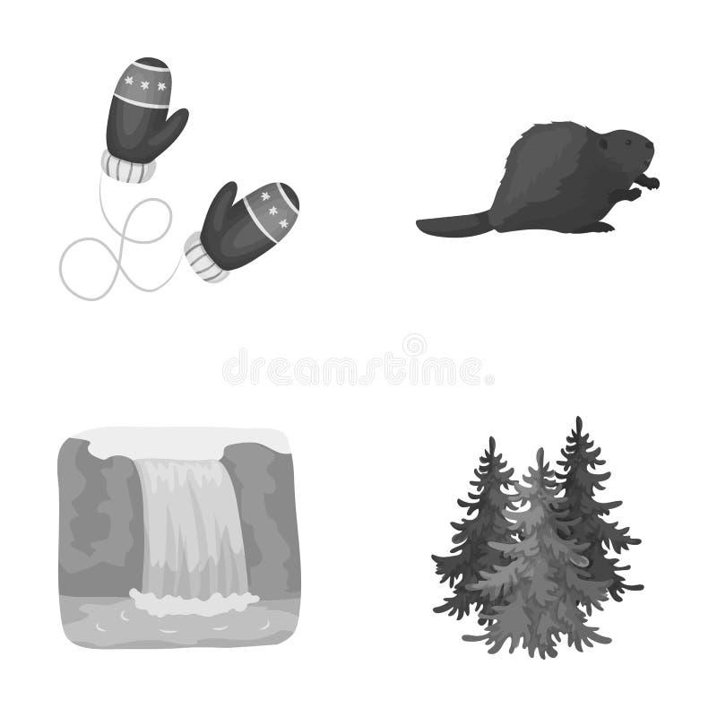 Kanadische Tanne, Biber und andere Symbole von Kanada Vector gesetzte Sammlungsikonen Kanadas in der einfarbigen Art Symbolvorrat lizenzfreie abbildung