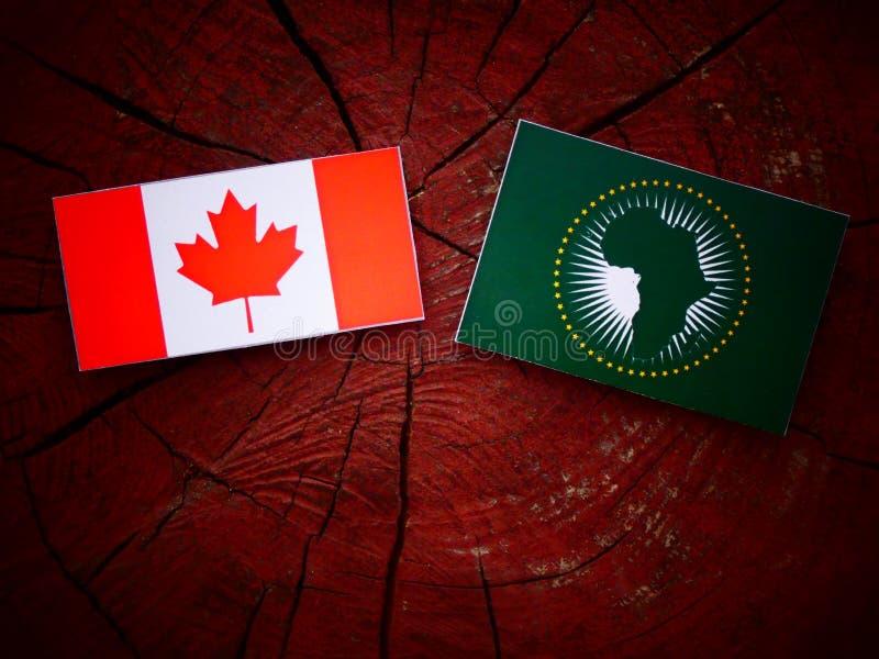 Kanadyjczyk flaga z Afrykańską Zrzeszeniową flaga na drzewnym fiszorku zdjęcie royalty free