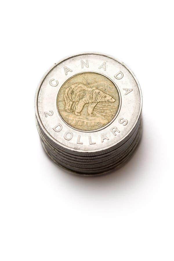 kanadyjskie monety obrazy royalty free