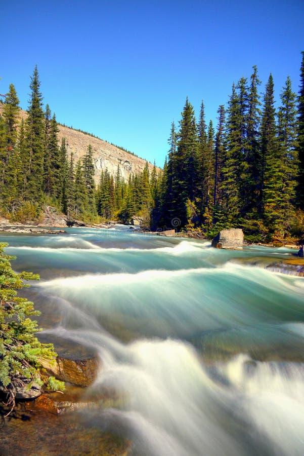 Kanadyjskie Skaliste góry, Glacjalna Robson rzeka zdjęcie stock